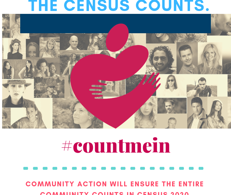 Census Day of Action 2019